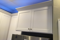 Molding-Led Lights- West Chase-bourgoing-construction