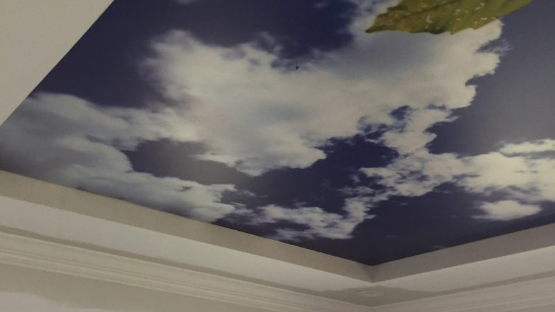 Stretch Ceiling in Largo Florida